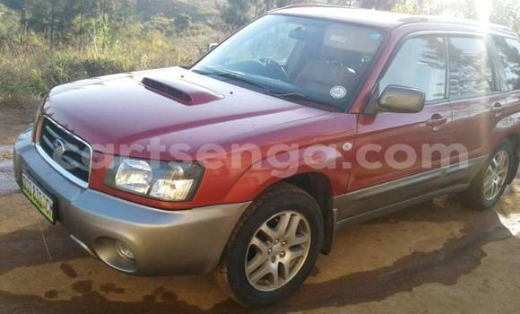 Buy Used Subaru Forester Brown Car in Mbabane in Manzini