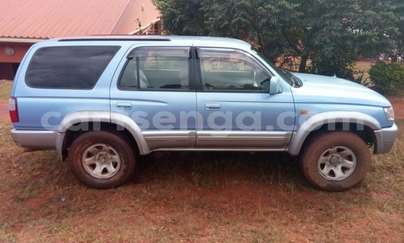 Buy Used Toyota Surf Blue Car in Pigg's Peak in Hhohho