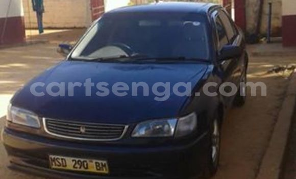 Buy Used Toyota Corolla Black Car in Manzini in Manzini