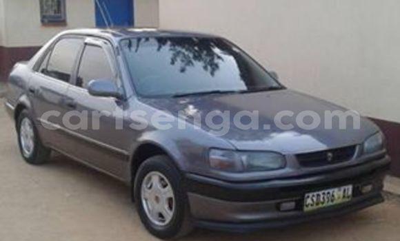 Nunua Ilio tumika Toyota Corolla Other Gari ndani ya Manzini nchini Manzini