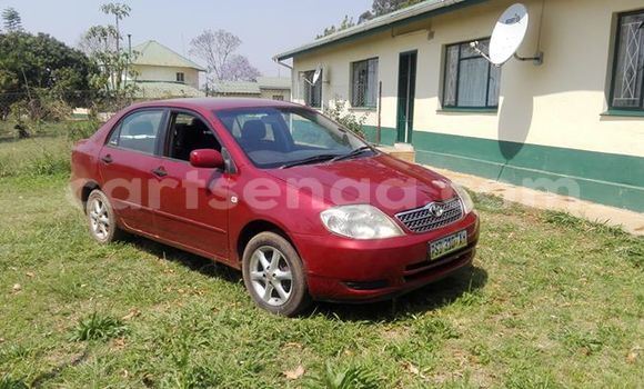 Buy Used Toyota Corolla Red Car in Manzini in Manzini