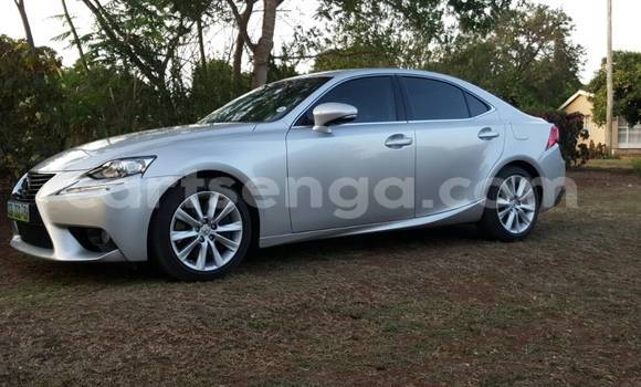 Buy Used Lexus IS Silver Car in Simunye in Lubombo District