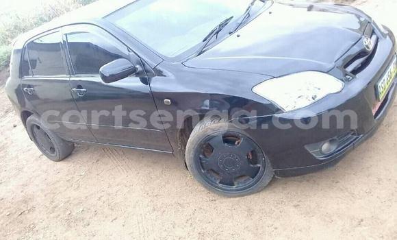 Buy Used Toyota Runx Black Car in Mbabane in Manzini