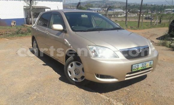 Buy Used Toyota Runx Other Car in Matsapha in Manzini