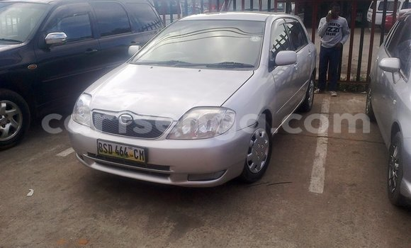 Buy Used Toyota Runx Silver Car in Mbabane in Manzini