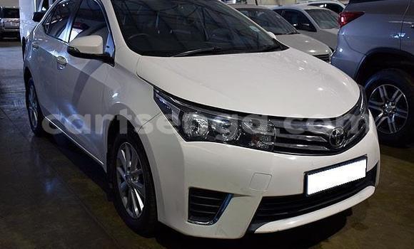 Buy Used Toyota Corolla White Car in Big Bend in Lubombo