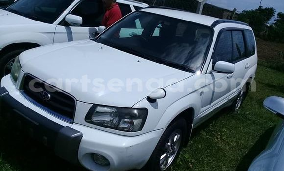 Buy Used Subaru Forester White Car in Matsapha in Manzini