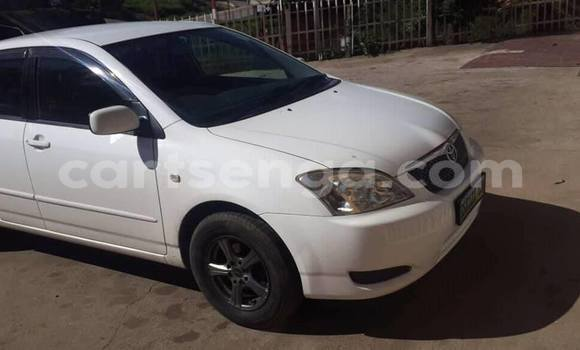 Buy Imported Toyota Runx White Car in Manzini in Manzini