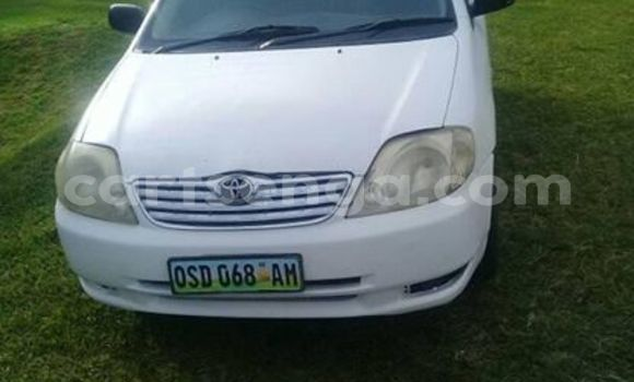 Buy Used Toyota Runx White Car in Bhunya in Manzini