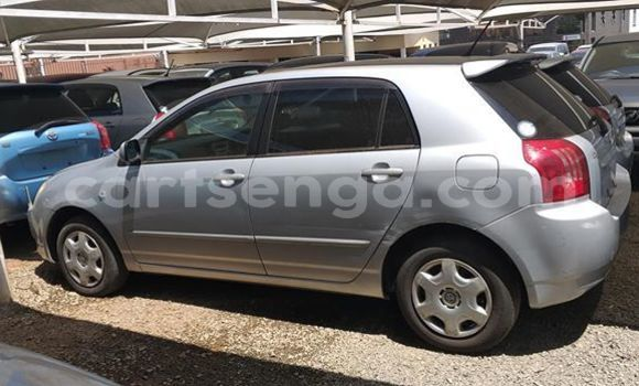 Buy Used Toyota Runx Silver Car in Nhlangano in Shiselweni District