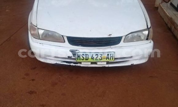 Buy Used Toyota Corolla White Car in Mbabane in Manzini