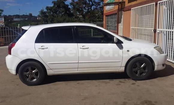 Buy Used Toyota Runx White Car in Manzini in Manzini