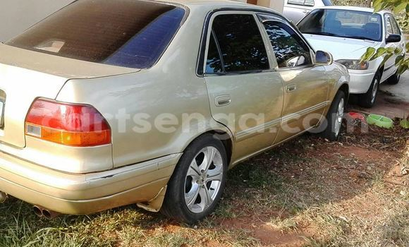 Buy Used Toyota Corolla Brown Car in Manzini in Manzini