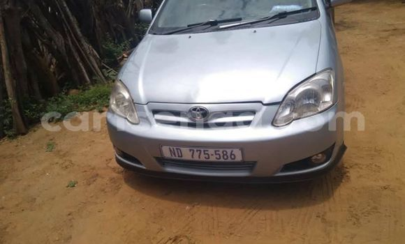 Buy Used Toyota Runx Silver Car in Hlatikulu in Shiselweni District
