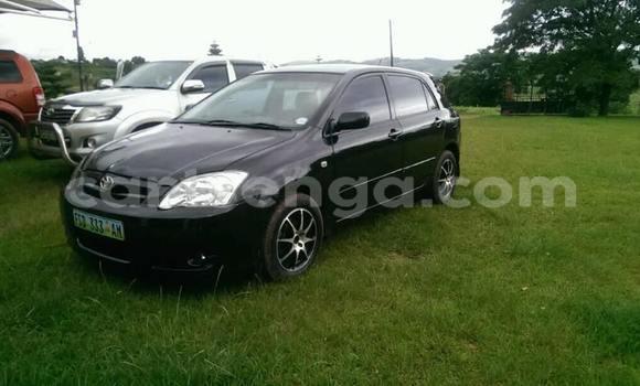 Buy Used Toyota Runx Black Car in Manzini in Manzini