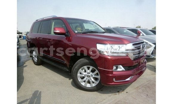 buy import toyota land cruiser beige car in import