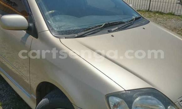 Buy Used Toyota Runx Beige Car in Matsapha in Manzini