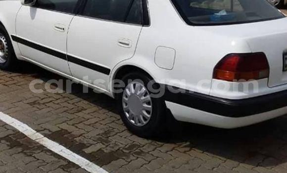 Nunua Ilio tumika Toyota Corolla White Gari ndani ya Manzini nchini Manzini