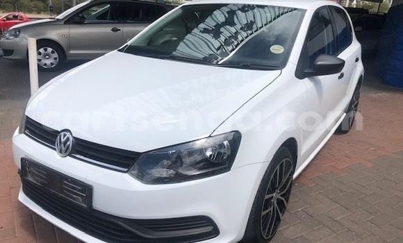 Buy Used Volkswagen Polo White Car in Kwaluseni in Manzini