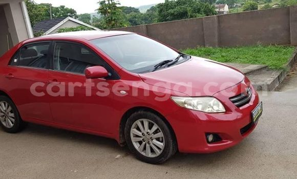 Buy Used Toyota Corolla Red Car in Mbabane in Manzini