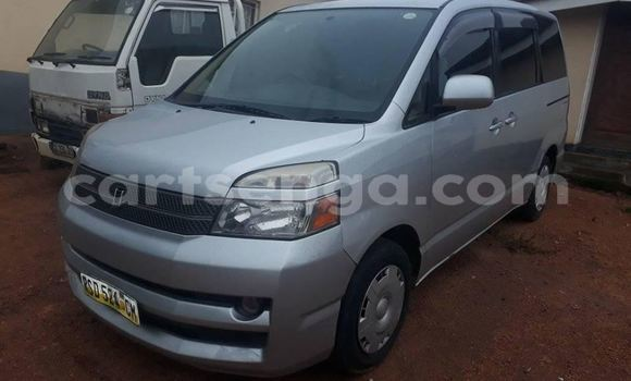 Buy Used Toyota Voxy Silver Car in Mbabane in Manzini