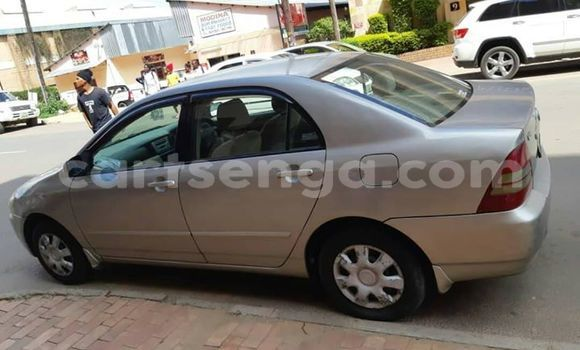 Buy Used Toyota Corolla Other Car in Manzini in Manzini