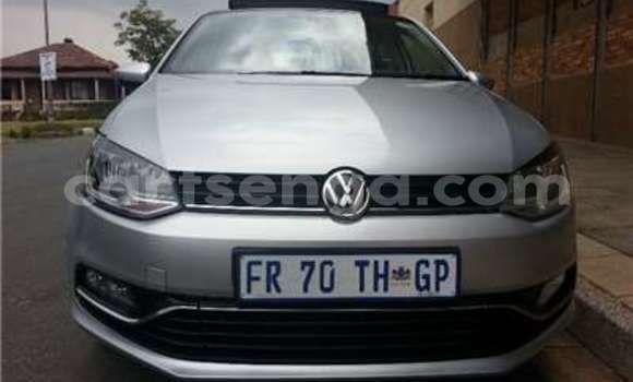 Buy Used Volkswagen Polo Silver Car in Big Bend in Lubombo