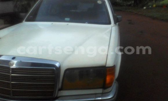 Buy Used Mercedes‒Benz 200 White Car in Manzini in Swaziland