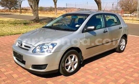 Buy Used Toyota Runx Silver Car in Mbabane in Manzini