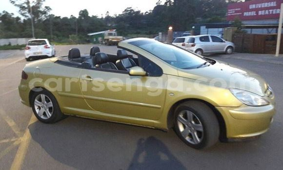 Buy Used Peugeot 307 Other Car in Manzini in Swaziland