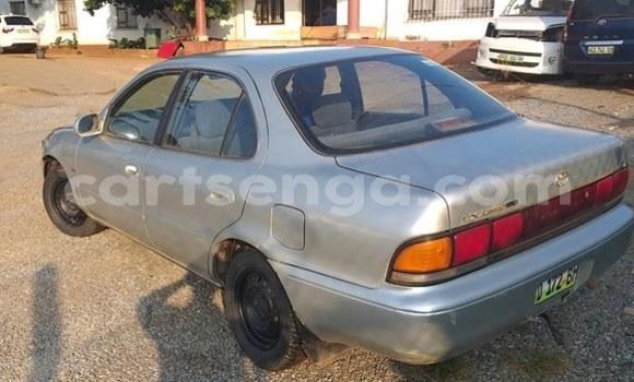 Buy Used Toyota Corolla Silver Car in Manzini in Manzini