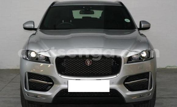 Buy Used Jaguar F-Pace Silver Car in Mbabane in Manzini