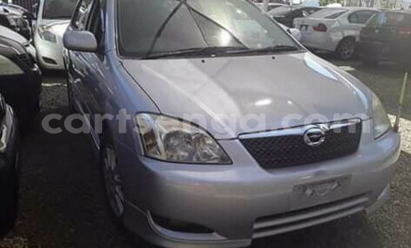Acheter Occasion Voiture Toyota Runx Gris à Manzini, Manzini