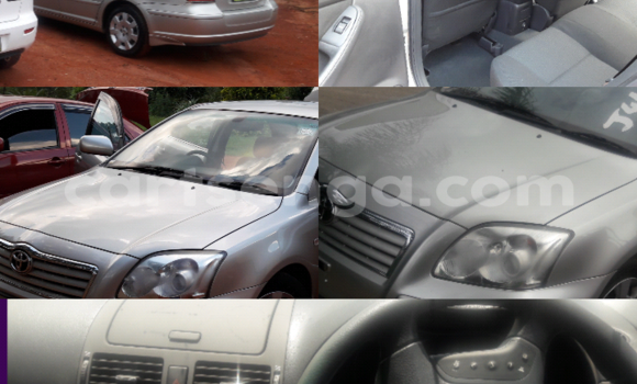 Buy Toyota Avensis Silver Car in Manzini in Swaziland