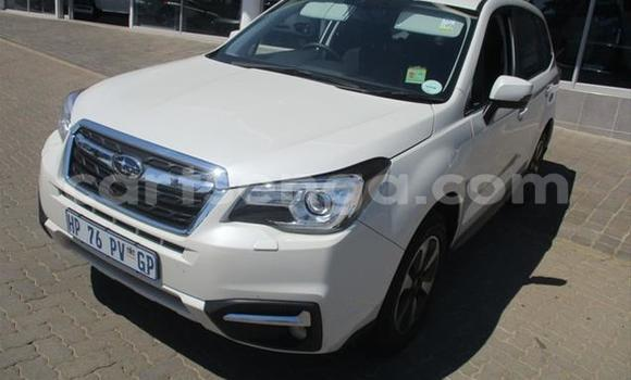Buy Used Subaru Forester White Car in Manzini in Manzini