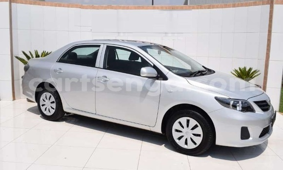 Buy Used Toyota Corolla Silver Car in Import - Dubai in Hhohho