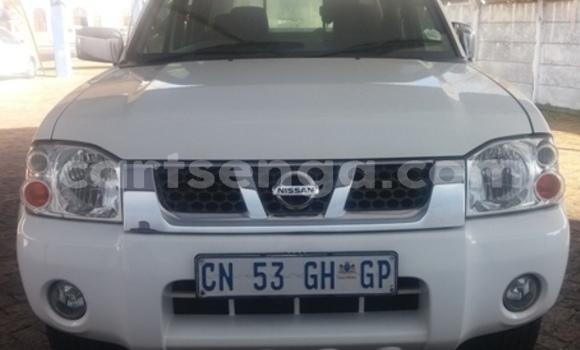 Buy Used Nissan Hardbody White Car in Bhunya in Manzini
