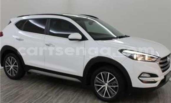 Buy Used Kia Sportage Silver Car in Import - Dubai in Hhohho