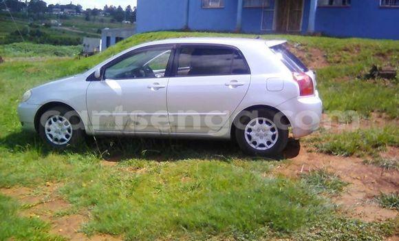 Buy Used Toyota Runx Silver Car in Manzini in Swaziland