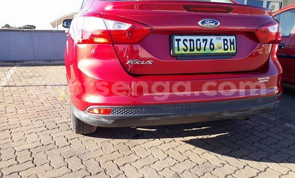 Buy Used Ford Focus Red Car in Manzini in Swaziland