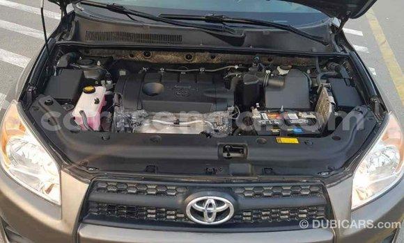 Buy Import Toyota 4Runner Brown Car in Import - Dubai in Hhohho