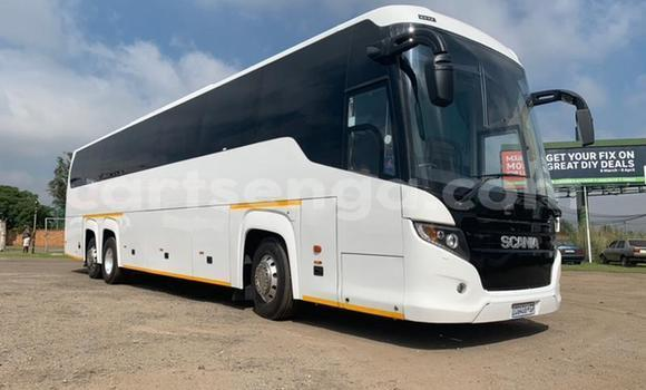 Buy Used Scania R420 White Truck in Mbabane in Manzini
