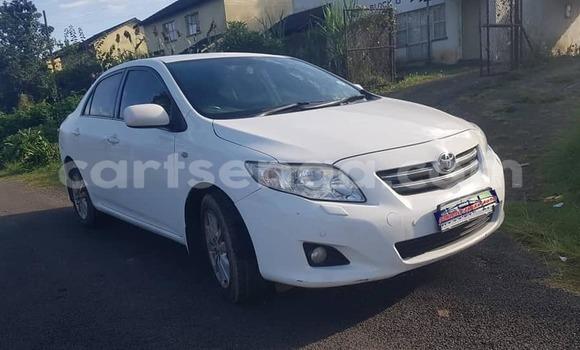Buy Used Toyota Corolla White Car in Manzini in Manzini