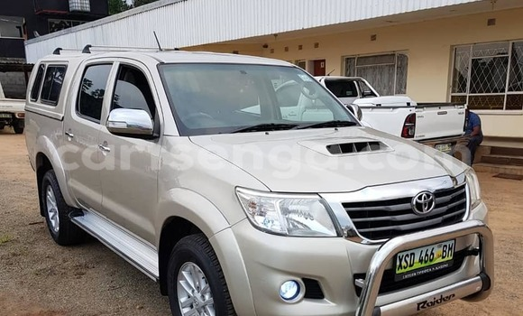 Buy Used Toyota Hilux Other Car in Manzini in Manzini
