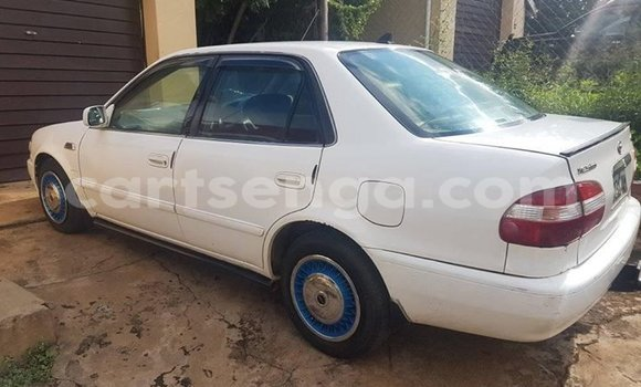 Buy Used Toyota Corolla White Car in Matsapha in Manzini