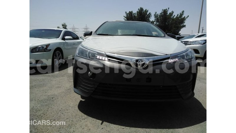 Big with watermark 9aee55bc 2539 4e77 8aff 0a94ce8b353d