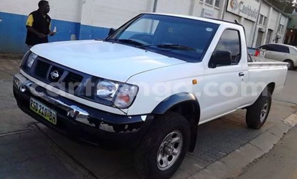 Buy Nissan Pickup White Car in Manzini in Swaziland