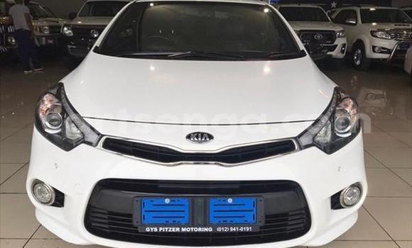 Buy Used Kia Cerato White Car in Big Bend in Lubombo District