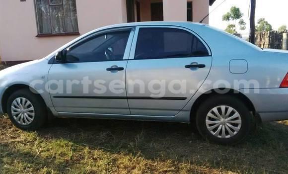 Buy Toyota Corolla Silver Car in Manzini in Swaziland