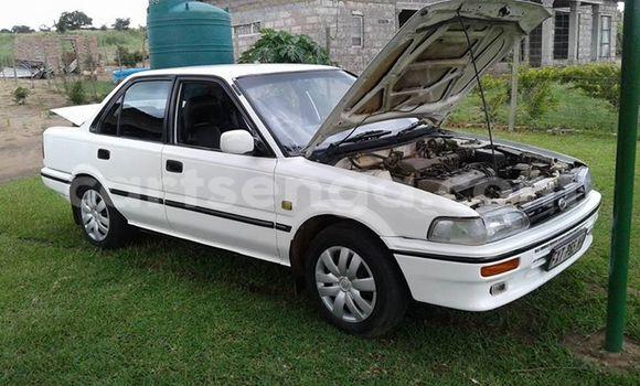 Buy Used Toyota Corolla White Car in Manzini in Swaziland